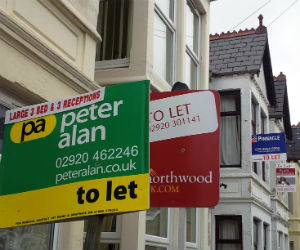 To let signs in Cardiff (Julie Nicholas)